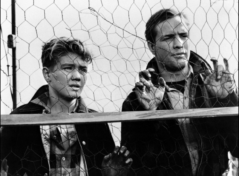 an analysis of the theme of truth in the film on the waterfront Get an answer for 'in on the waterfront, what particular cinematic techniques does in elia kazan's film, on the waterfront  what is the major theme in the.